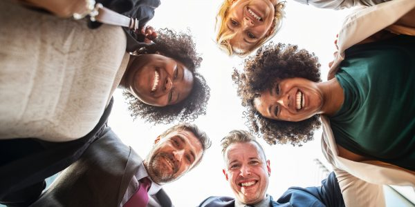 Diverse Organization: Business success in a complex world